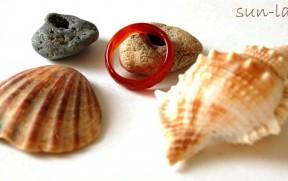Ракушки и камни из Чёрного моря