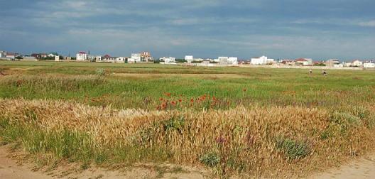 Вид на Песчанку с пляжа