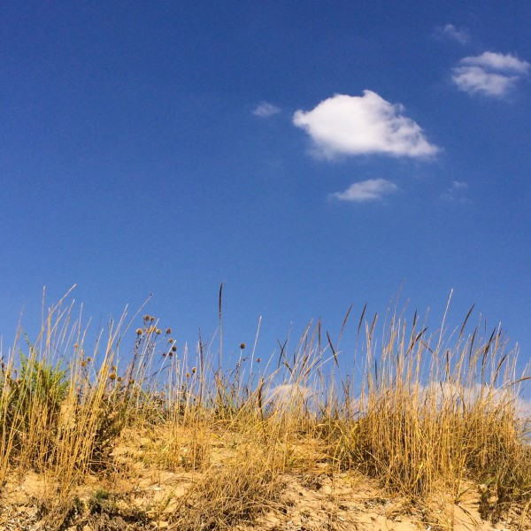 Песчанка, Заозерное
