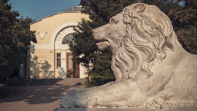 библиотека, Евпатория
