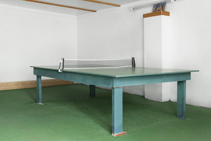 tennis-lastochka